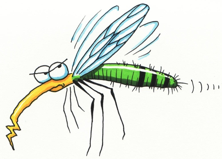 C:\Users\Админ\Desktop\mosquito.jpg