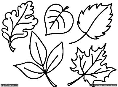 C:\Users\Микош\Desktop\листья.png