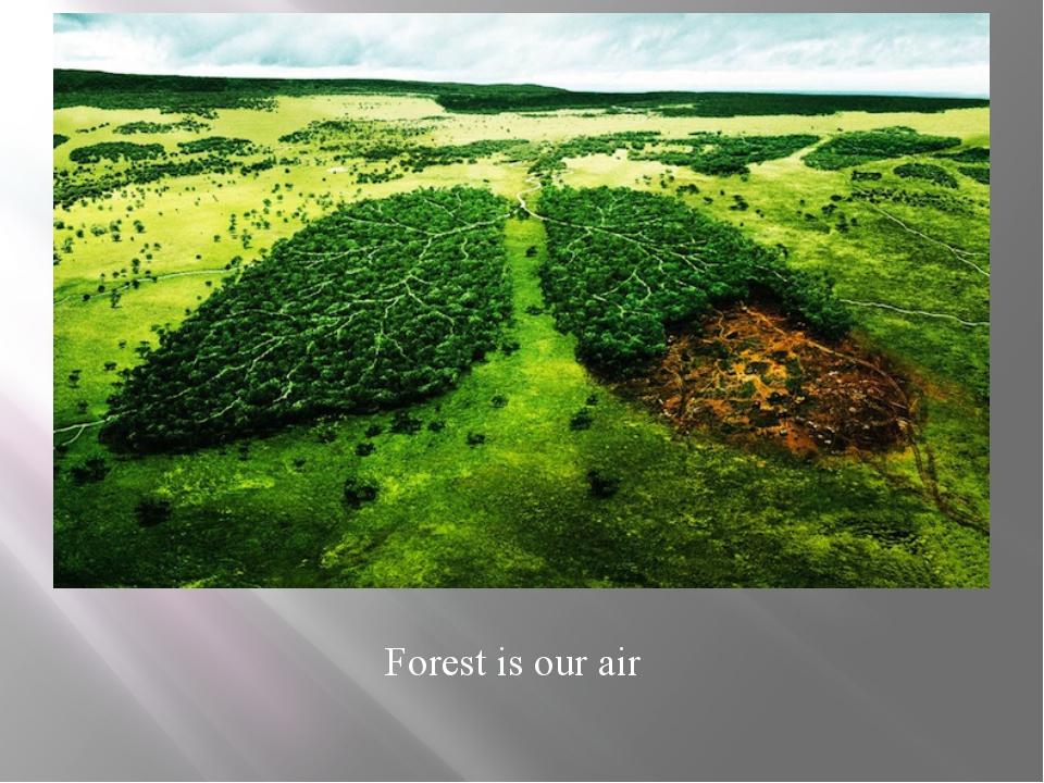 environmental problems can best be dealt