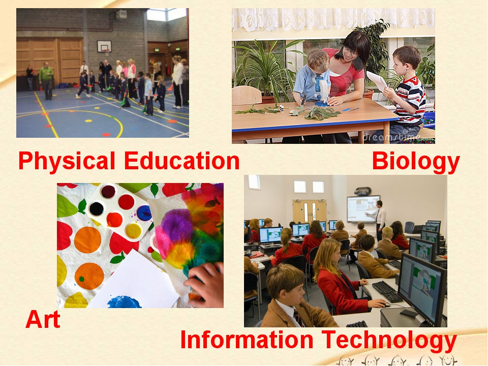 Physical Education Biology Art Information Technology