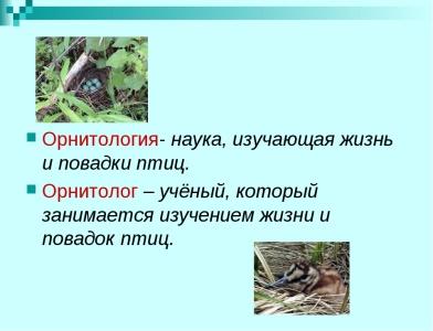 https://fs00.infourok.ru/images/doc/201/229852/img1.jpg