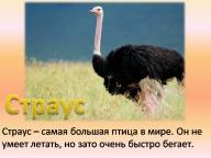 http://zero50x.myjino.ru/allpic/32/13223-img_20.jpg