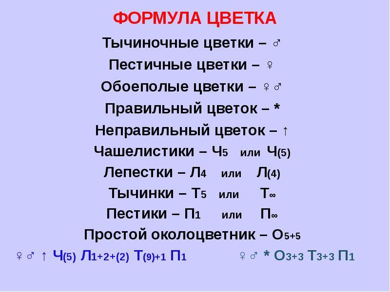 hello_html_77401a78.jpg