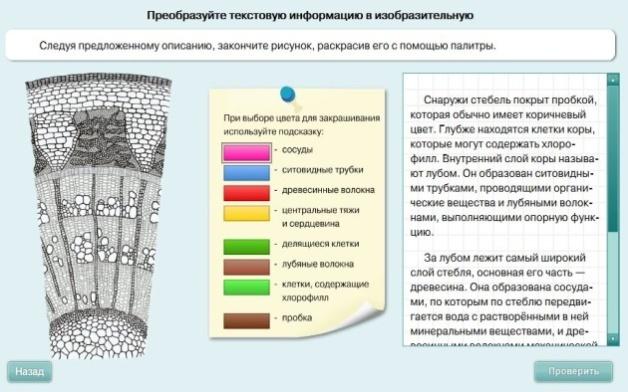 hello_html_m2b8c1f79.jpg