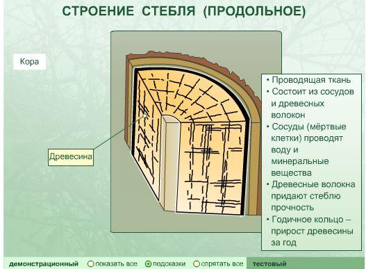 hello_html_m9b49537.jpg