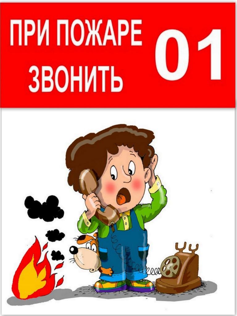 http://442fz.volganet.ru/upload/iblock/106/moi_dokumenty.jpg