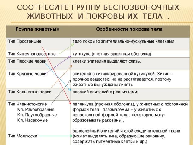 https://arhivurokov.ru/multiurok/c/1/e/c1e38346a35a4507fd872fcec17e605dd38c4630/img_phpv1L1q5_Urok-biologii-v-7-klasse-Pokrovy-tela_1_5.jpg