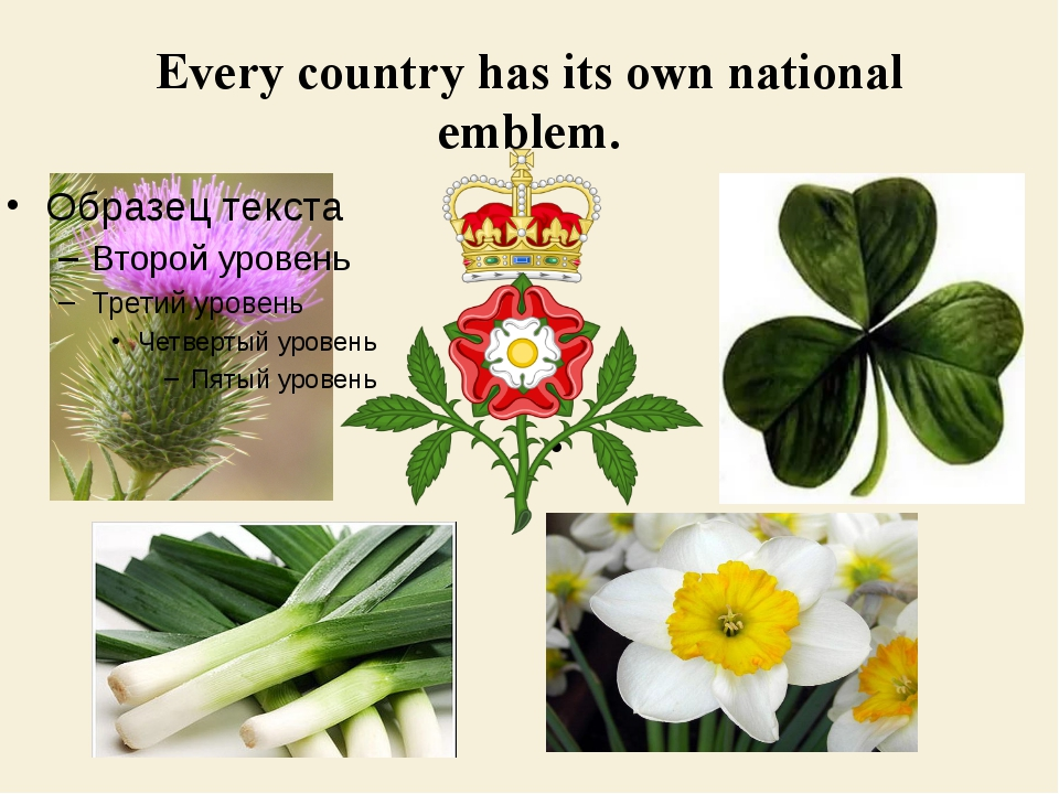 Every country has its own national emblem.