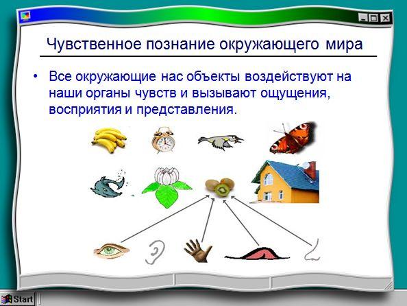 Аппликация в Детском Саду Реферат